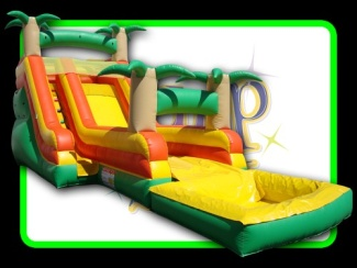 Picture Of Fifteen Foot Tropical Blast Dry Slide