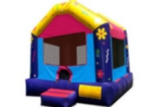 Picture of Dollhouse Standard Jumping Castle Jumpmaxx